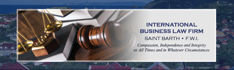 International Business Law Firm